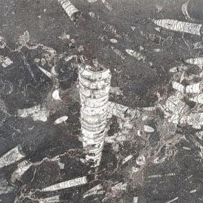 marmur-bagomar-gdansk-74